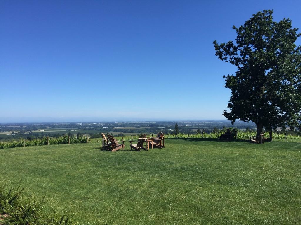 Durant Vineyards lawn