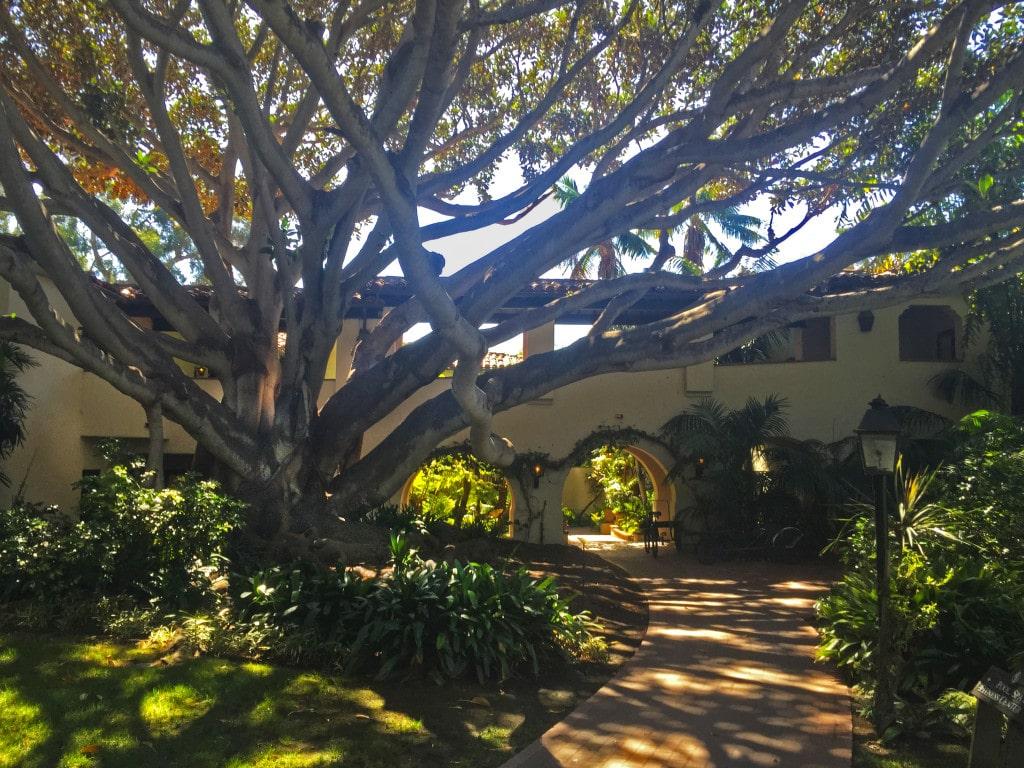 Santa Barbara Hotel - Four Seasons