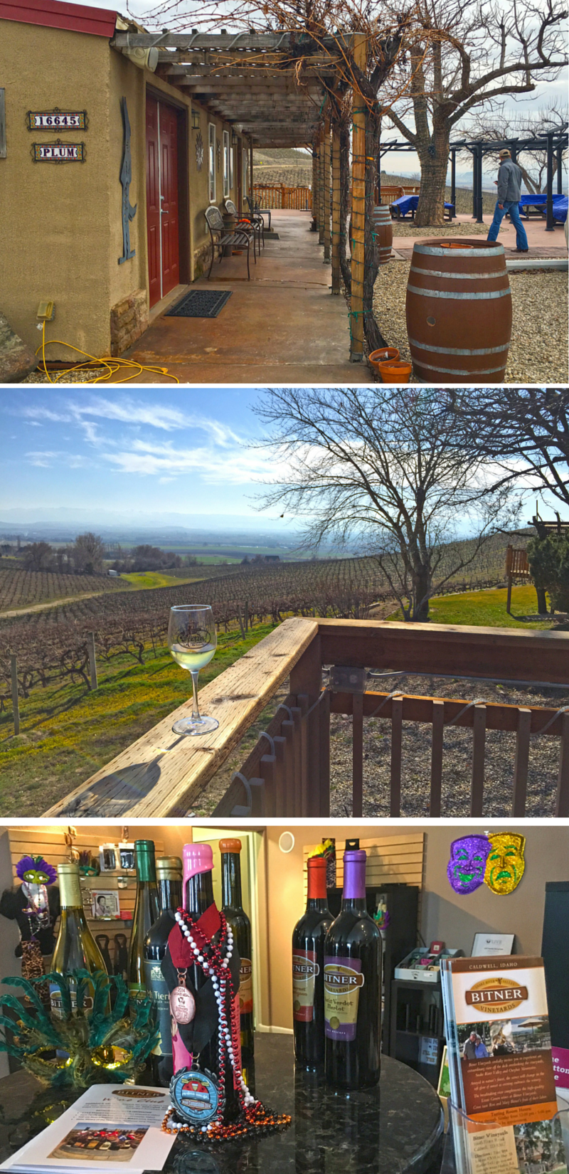Bitner Vineyards: Idaho Wine Guide