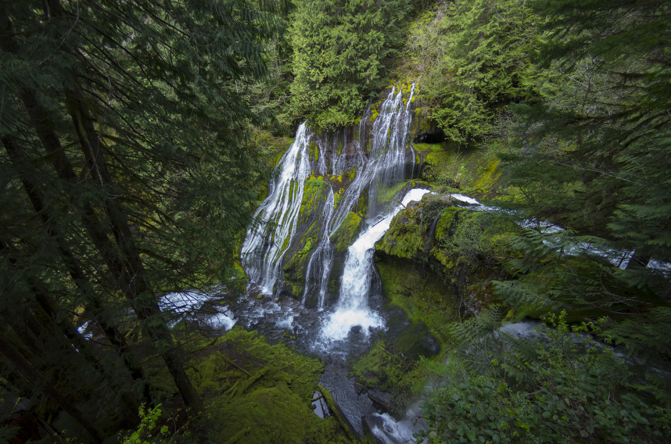 Panther Creek Falls: the best waterfall hikes near portland oregon
