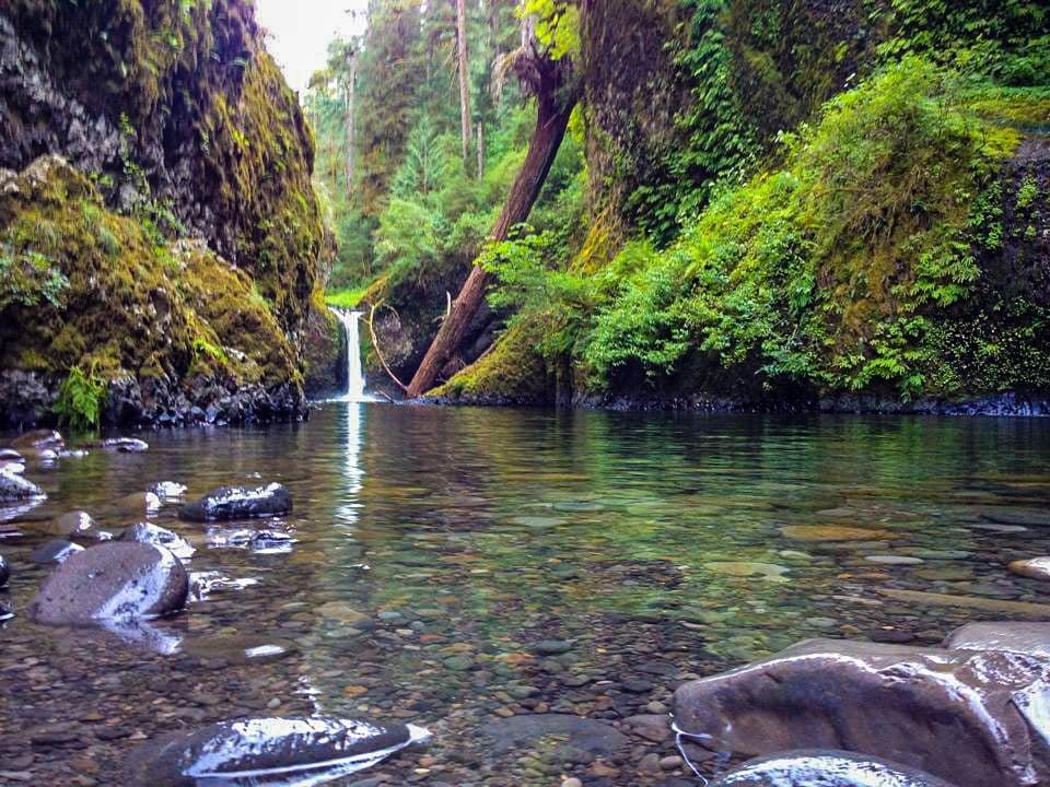 The best waterfall hikes near Portland, Oregon: Punchbowl Falls