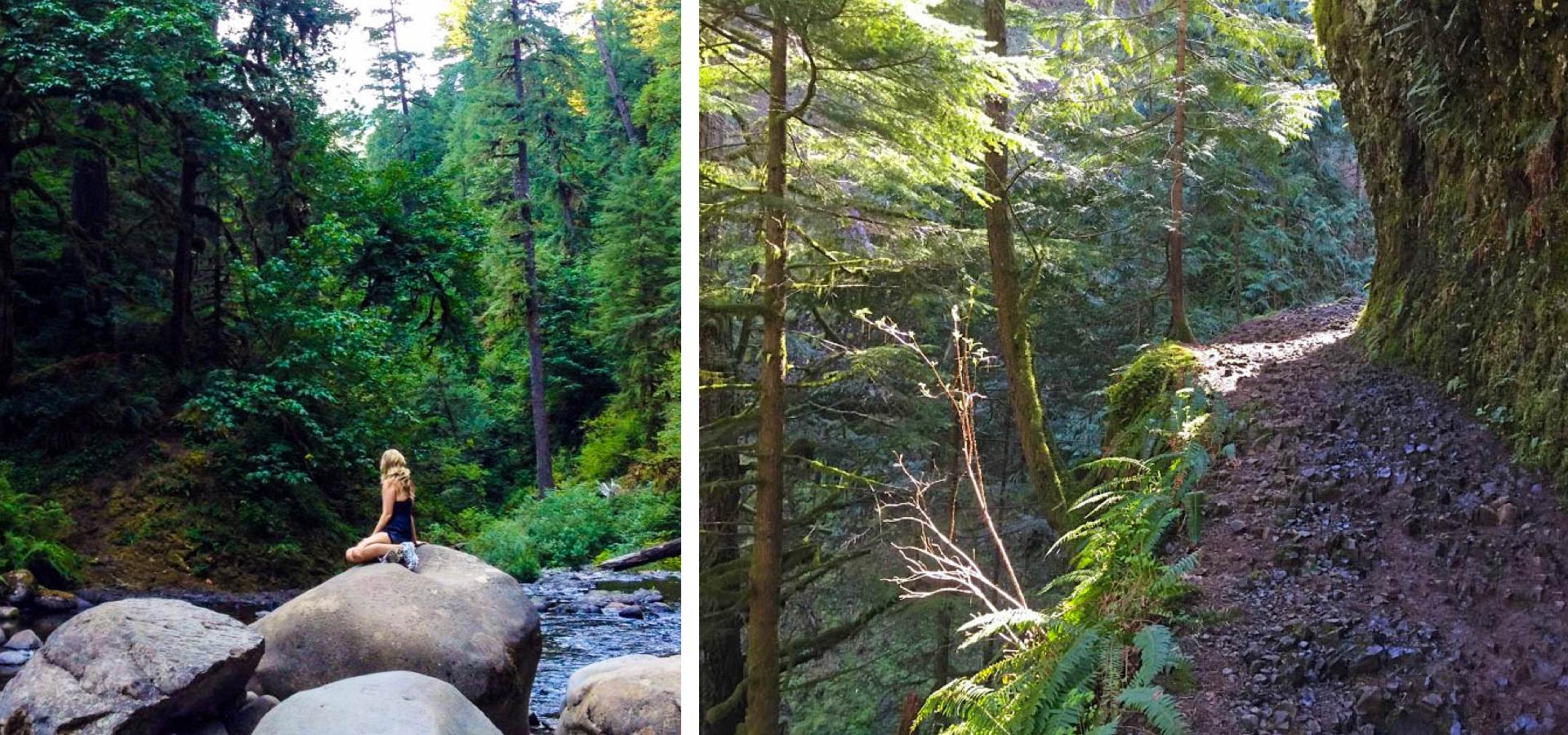 Punchbowl Falls: The best waterfall hikes near portland oregon