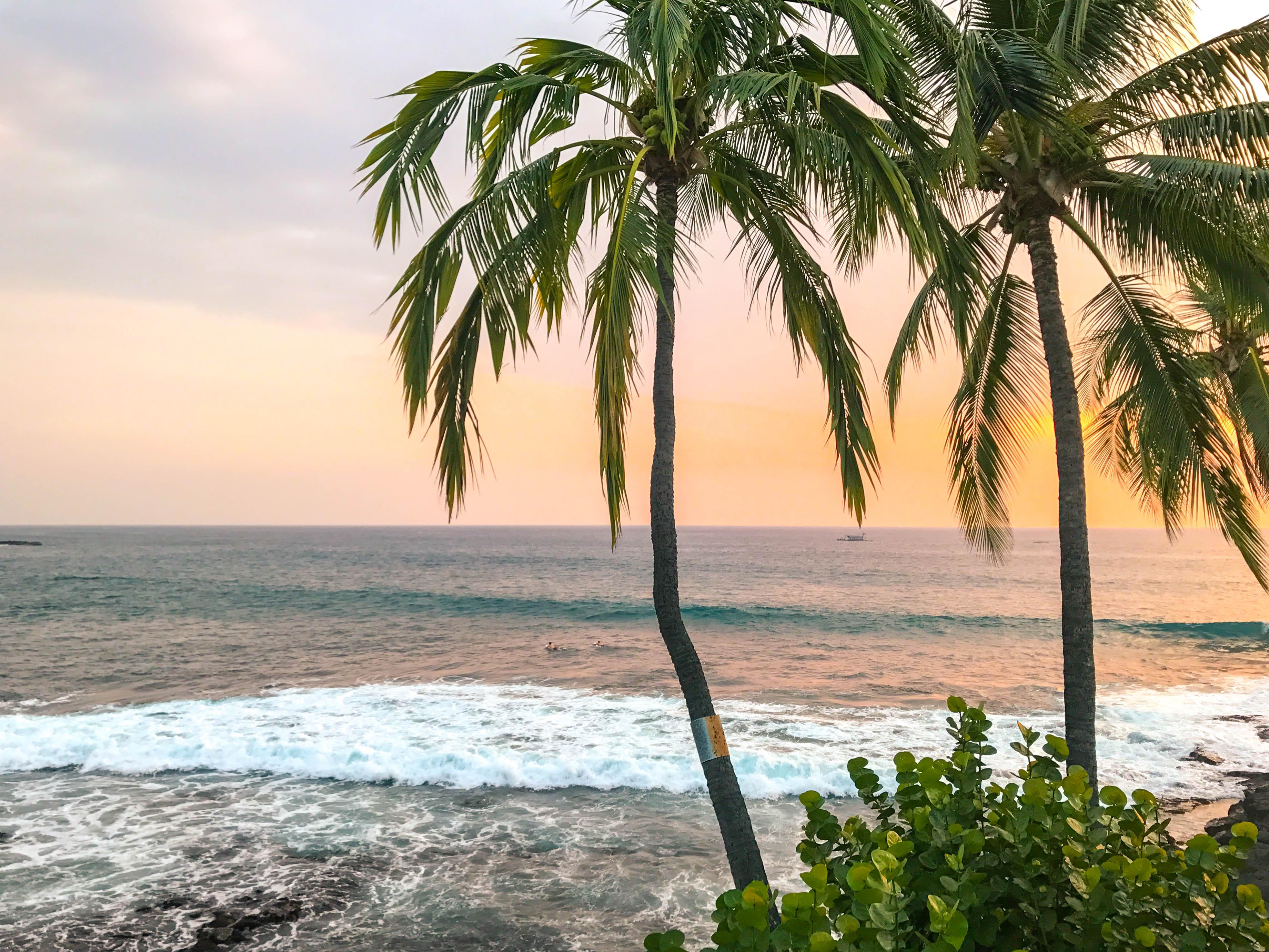 Mis waterfront bistro kona Hawaii