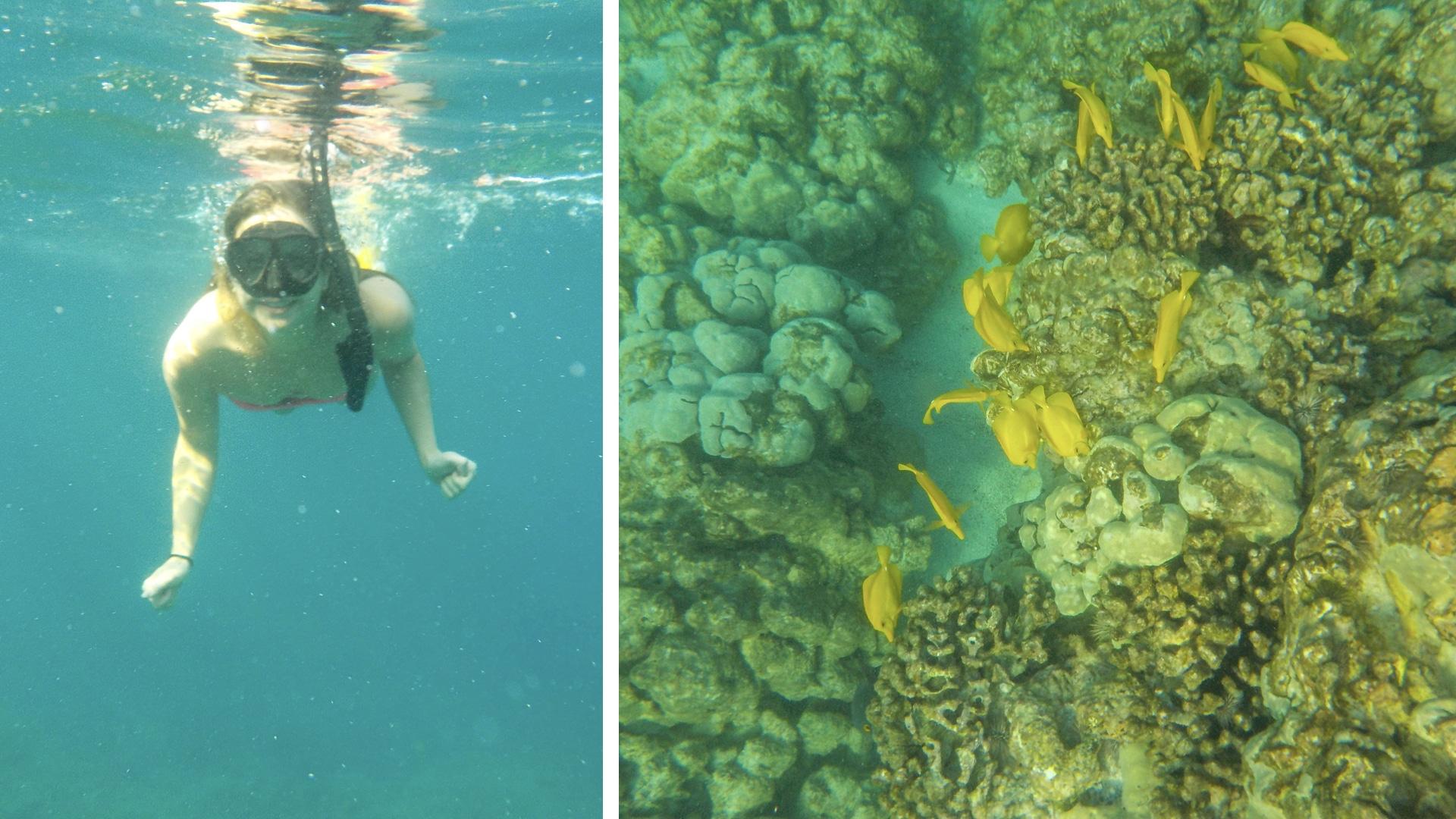 Snorkeling two step beach hawaii
