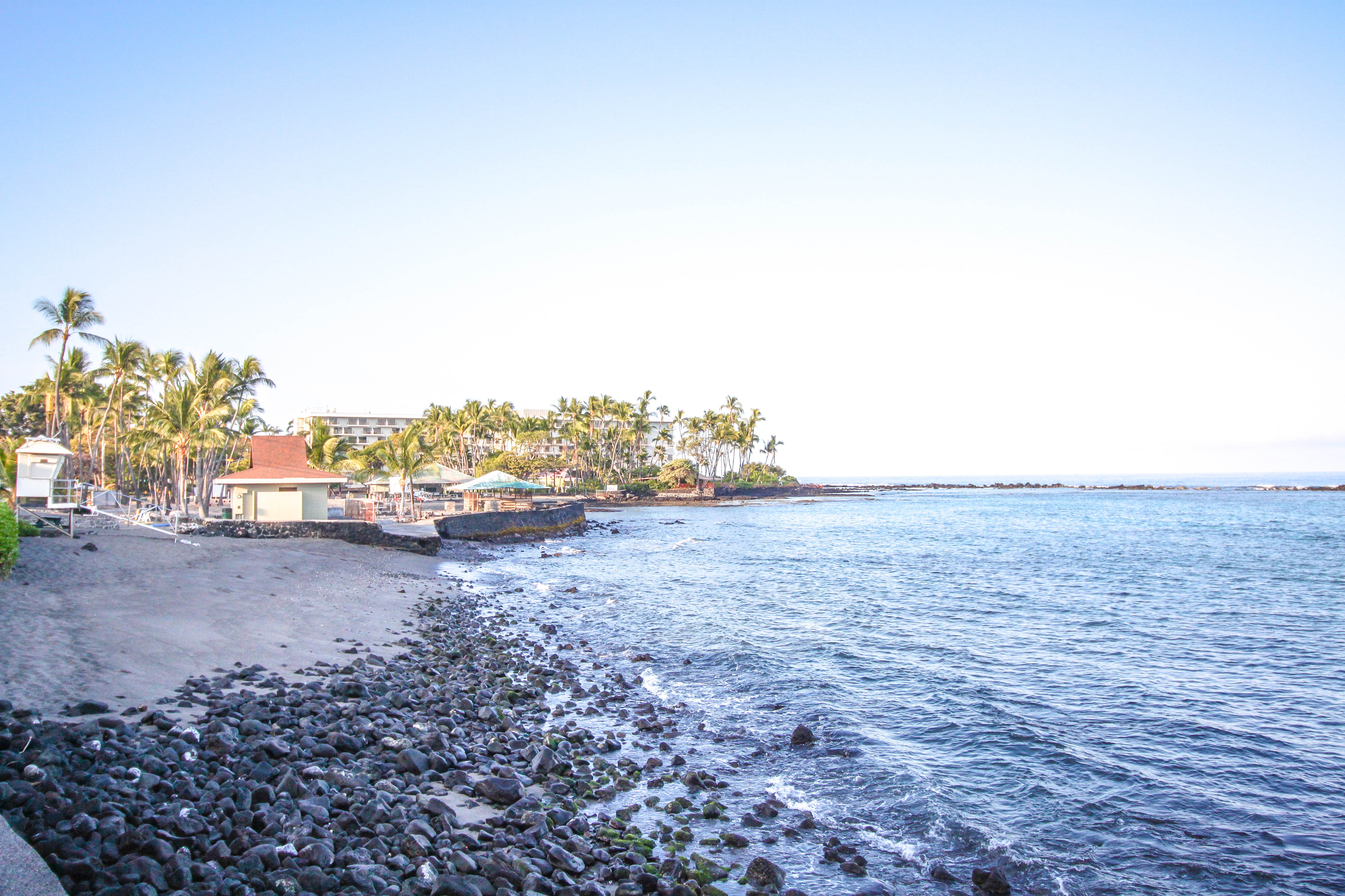 How to Swim with Dolphins on Hawaii's Big Island