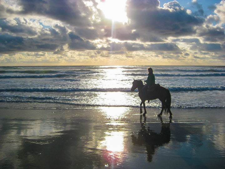 Guide to Florence Oregon: Ride Horses On The Beach
