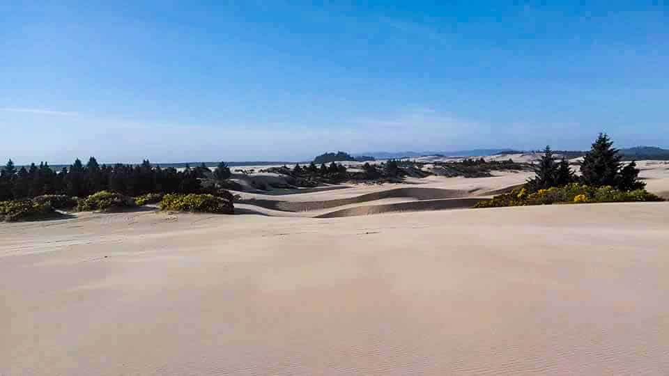 Guide to Florence Oregon: Dunes