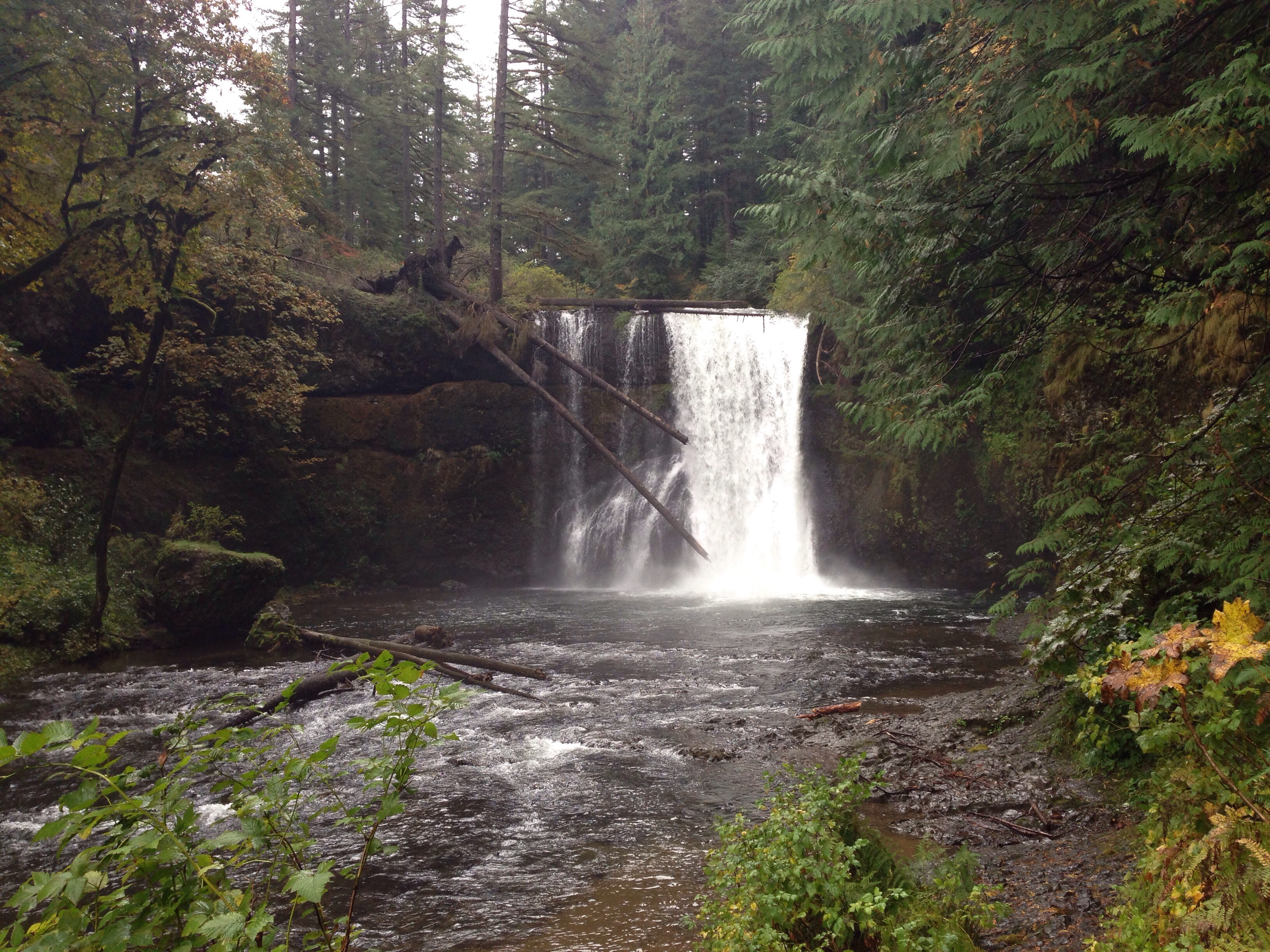 Silver Falls: The best waterfall hikes near portland Oregon