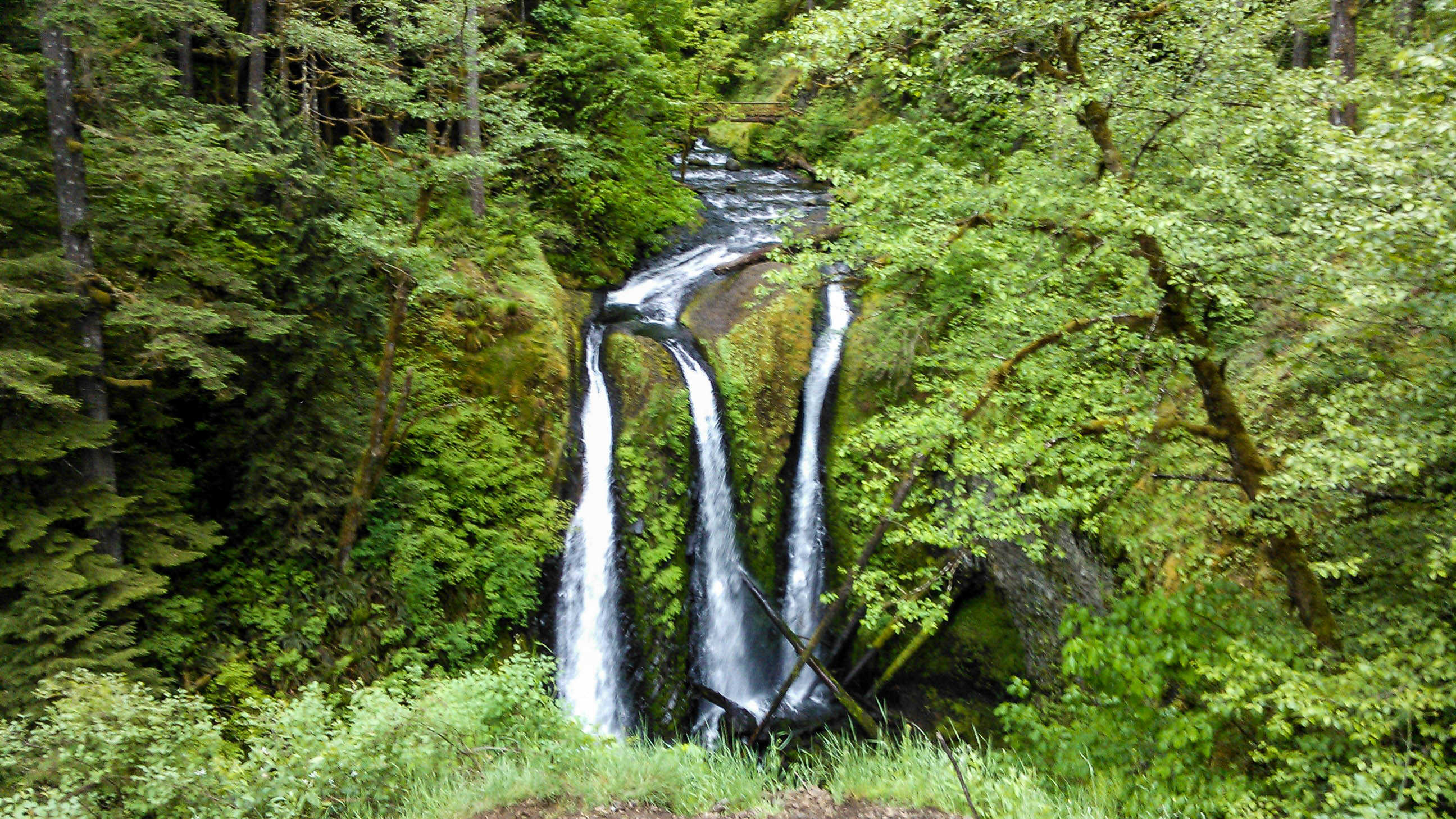 Triple falls: the best waterfall hikes near portland, oregon