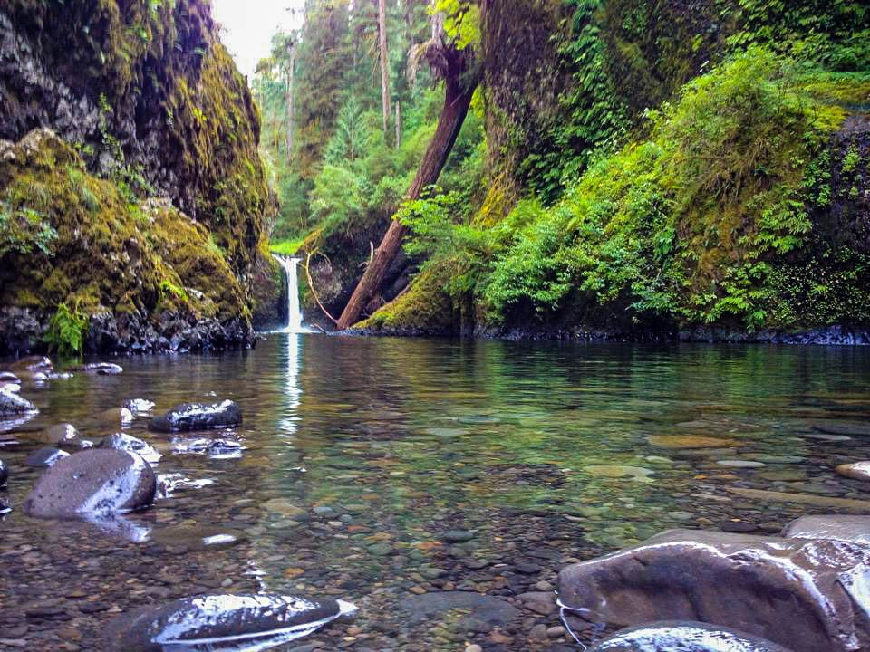 The best waterfall hikes near Portland, Oregon: Punchbowl Falls