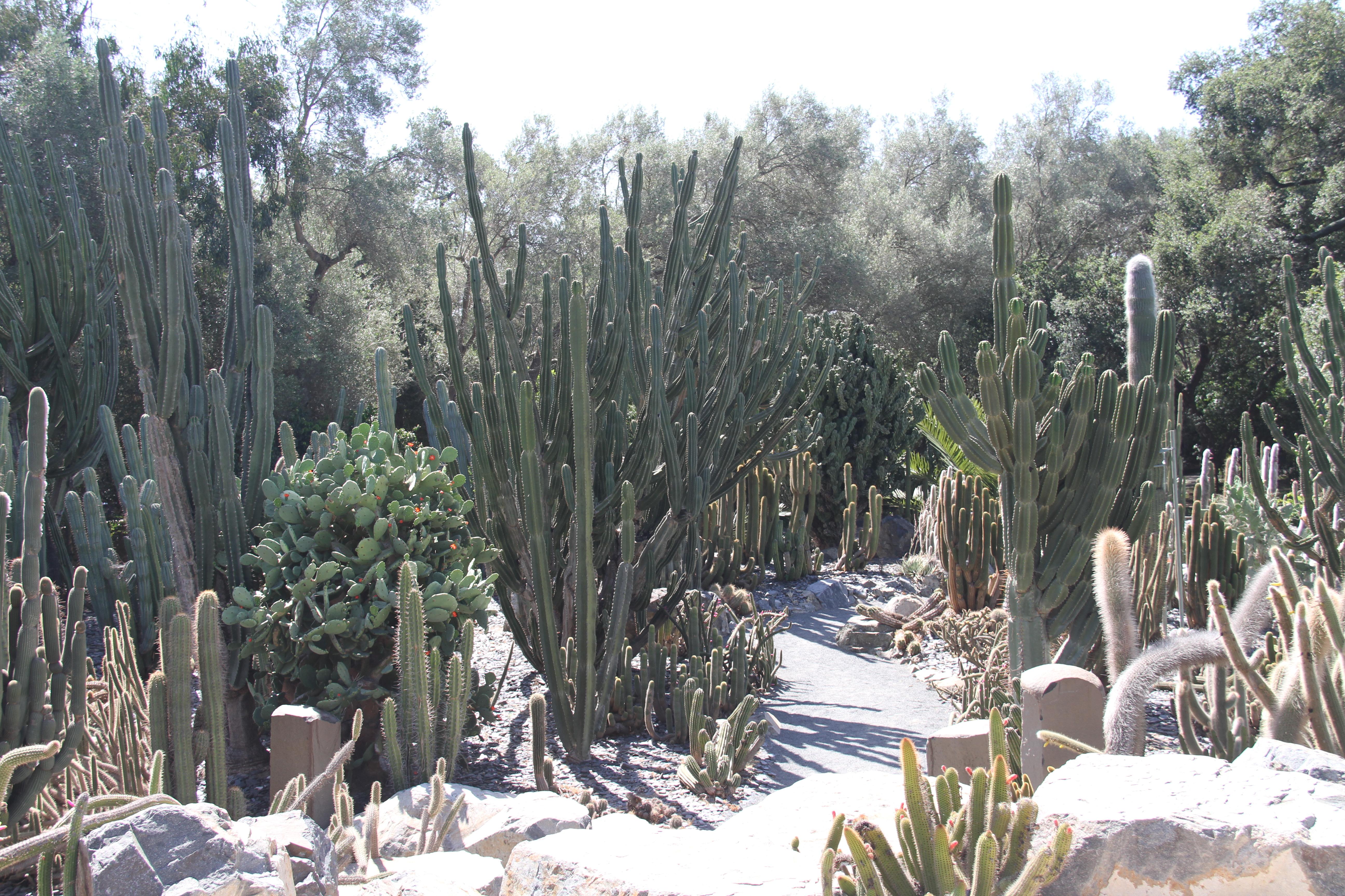 Ganna Walska Lotusland, Santa Barbara