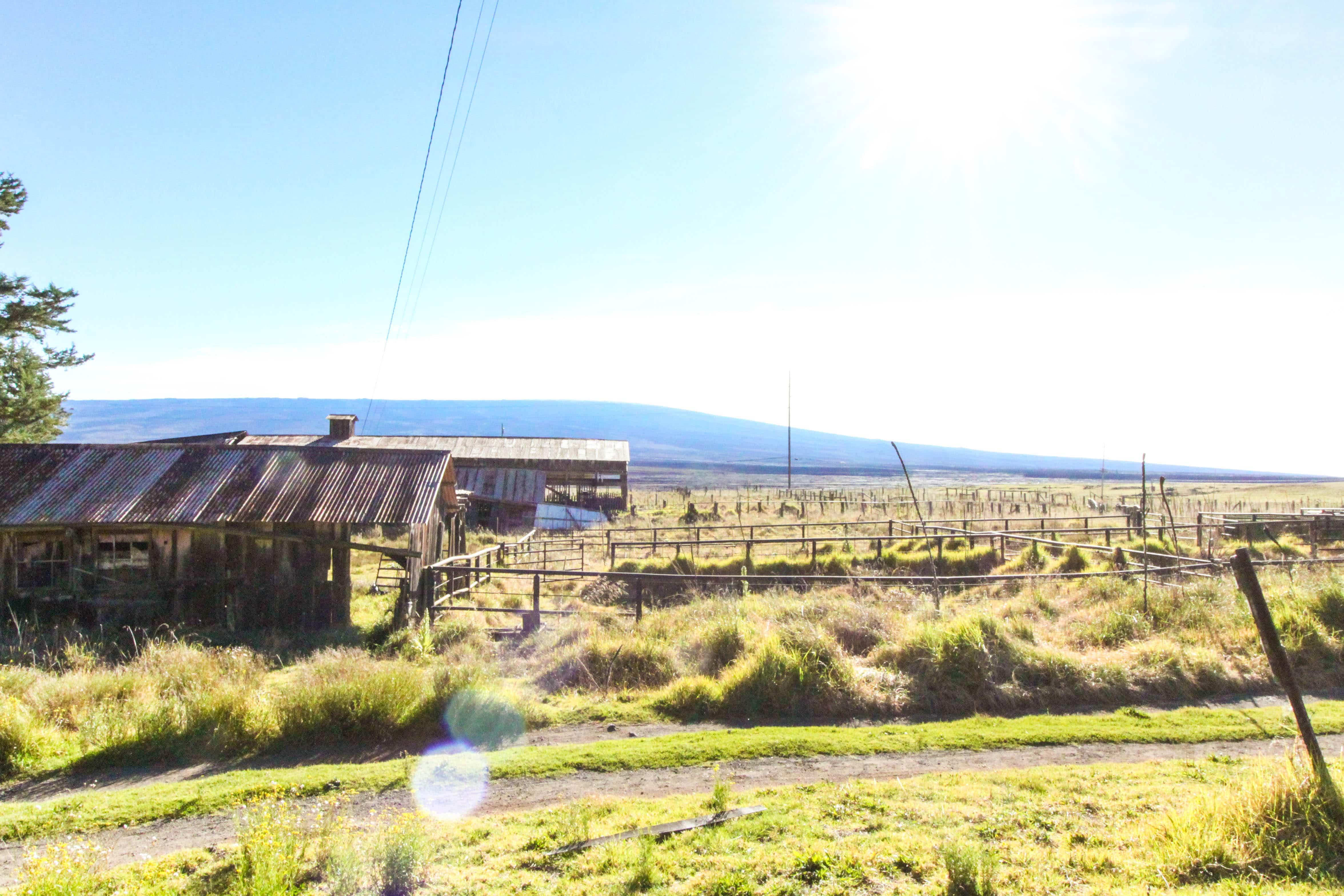 Mauna Kea Summit Tour