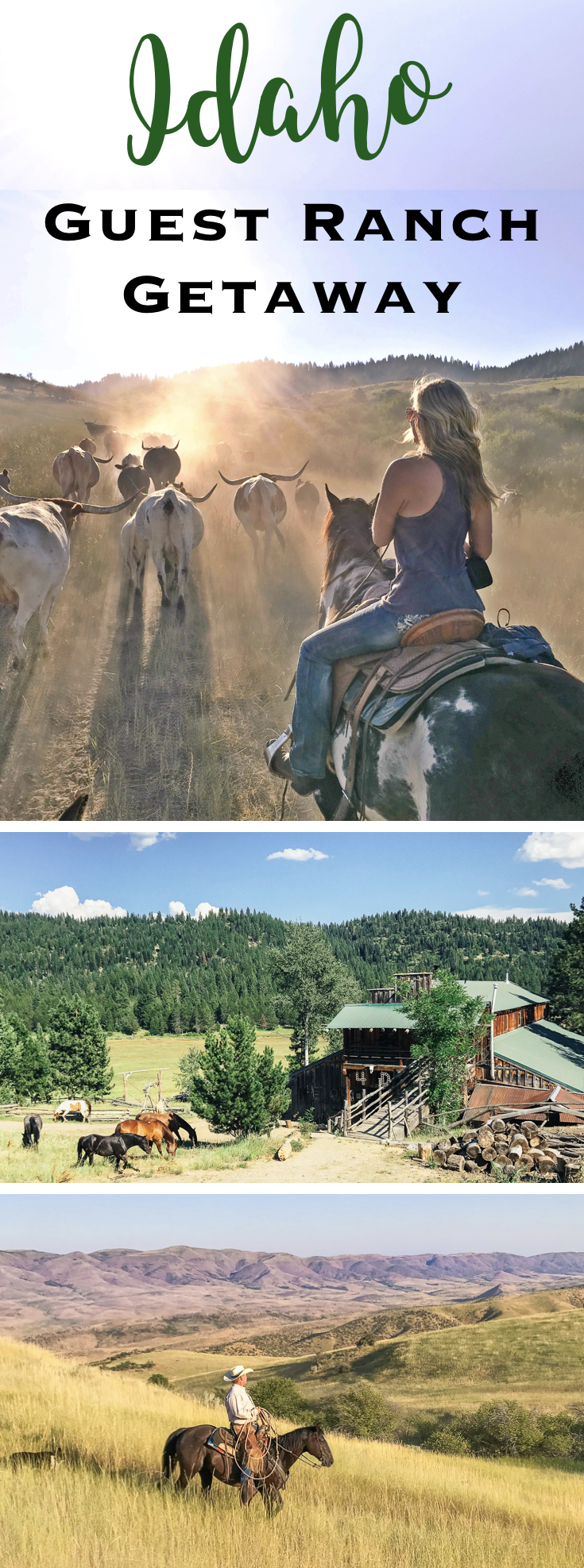 Cowboy Culture Lives on at Idaho's 4d Longhorn Guest Ranch