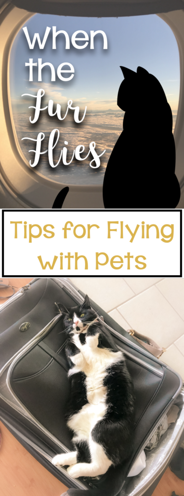 When The Fur Flies: Tips for Flying with Pets