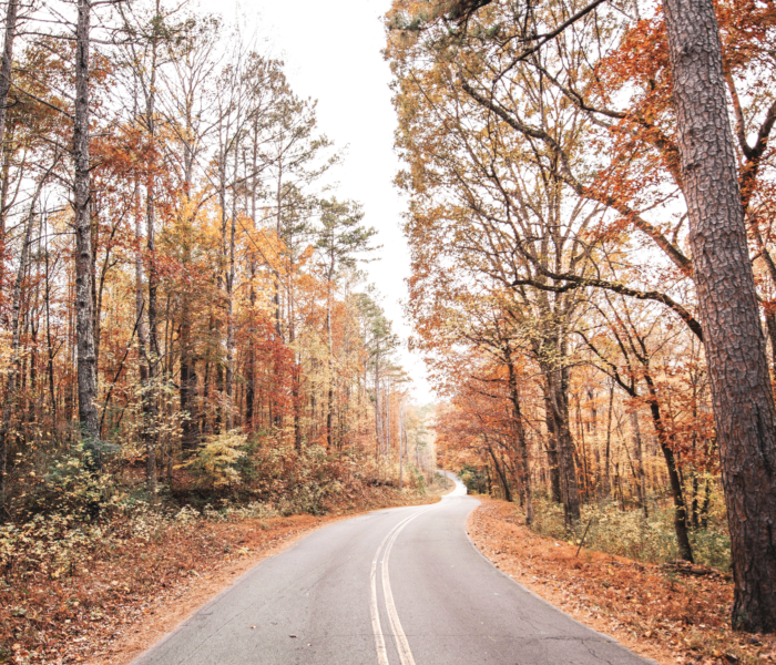The Best Fall Foliage Trips in the US