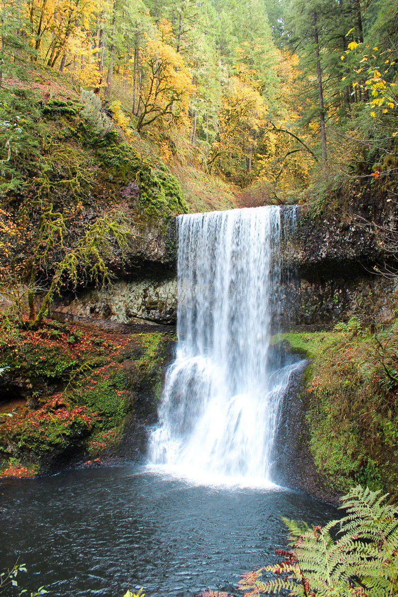 The Best Fall Foliage in the US - Oregon, Pacific Northwest