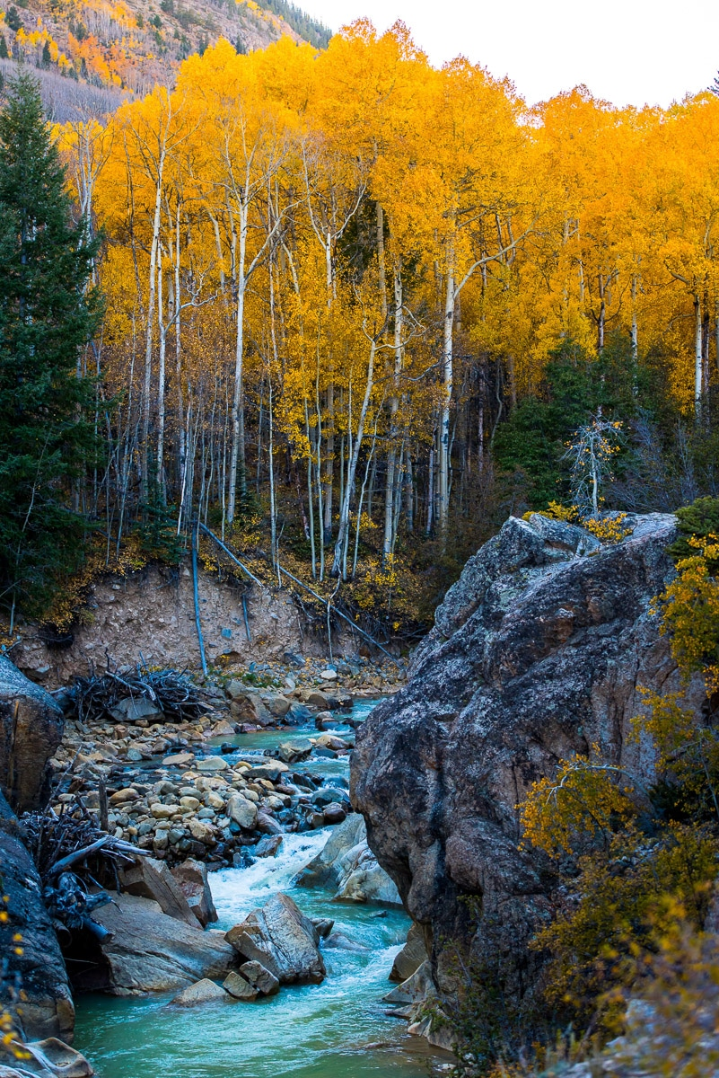 The Best Fall Foliage in the US - Colorado