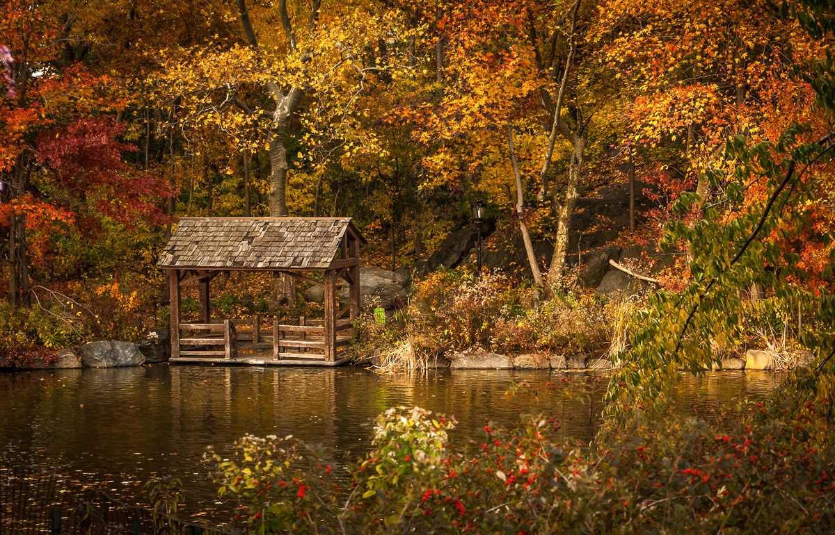 The Best Fall Foliage Trips in the US - New York
