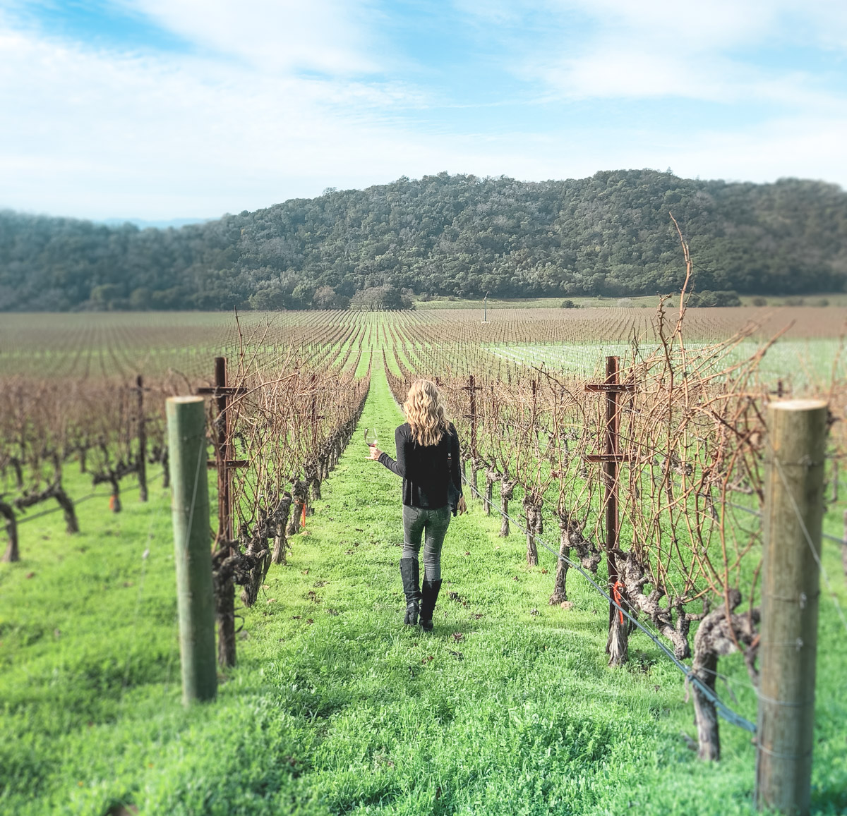 A Week end in Wine Country: Getaway Guide to Napa Valley
