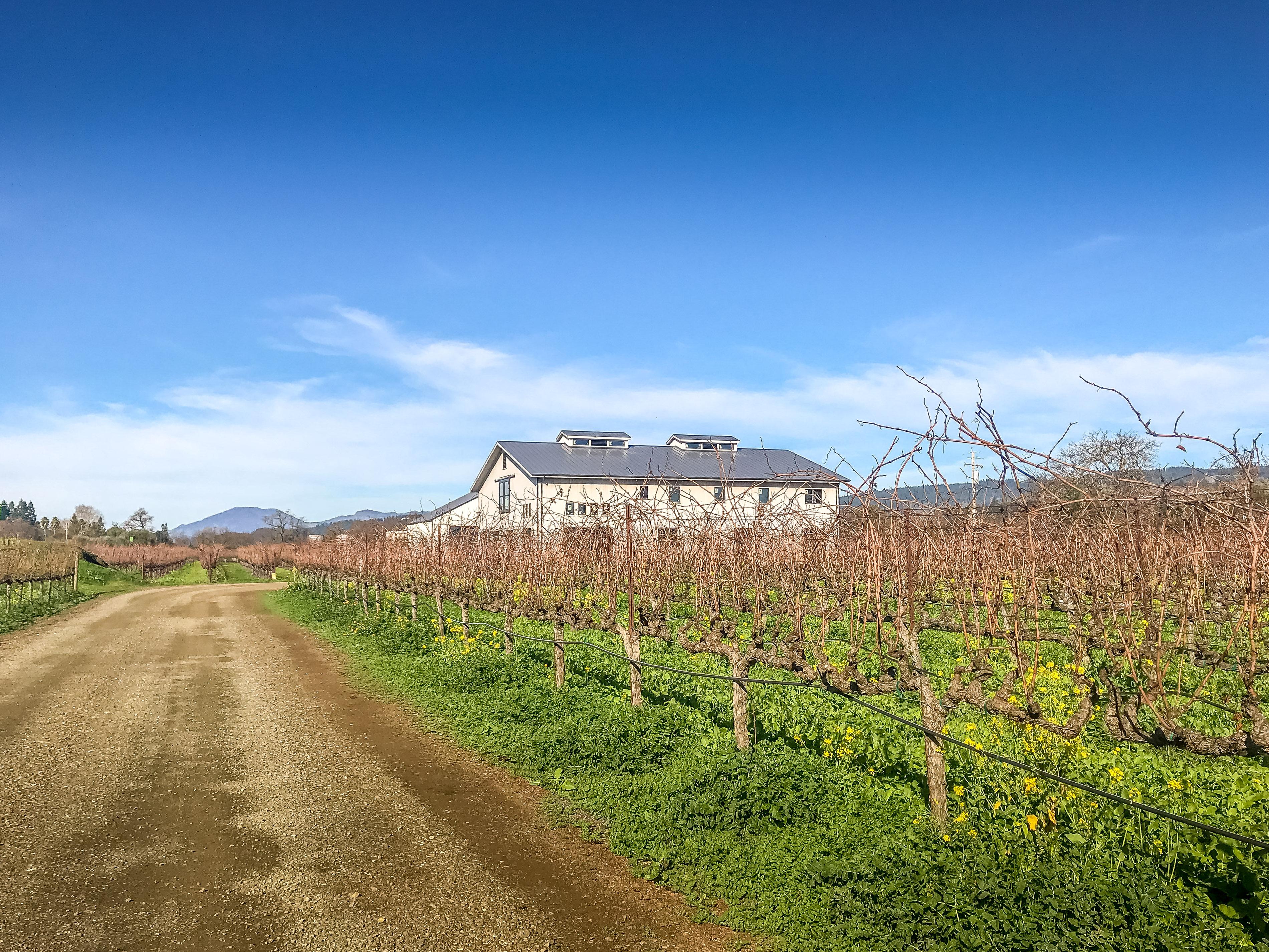 A Weekend in Wine Country: Getaway Guide to Napa Valley - Fleury Estate