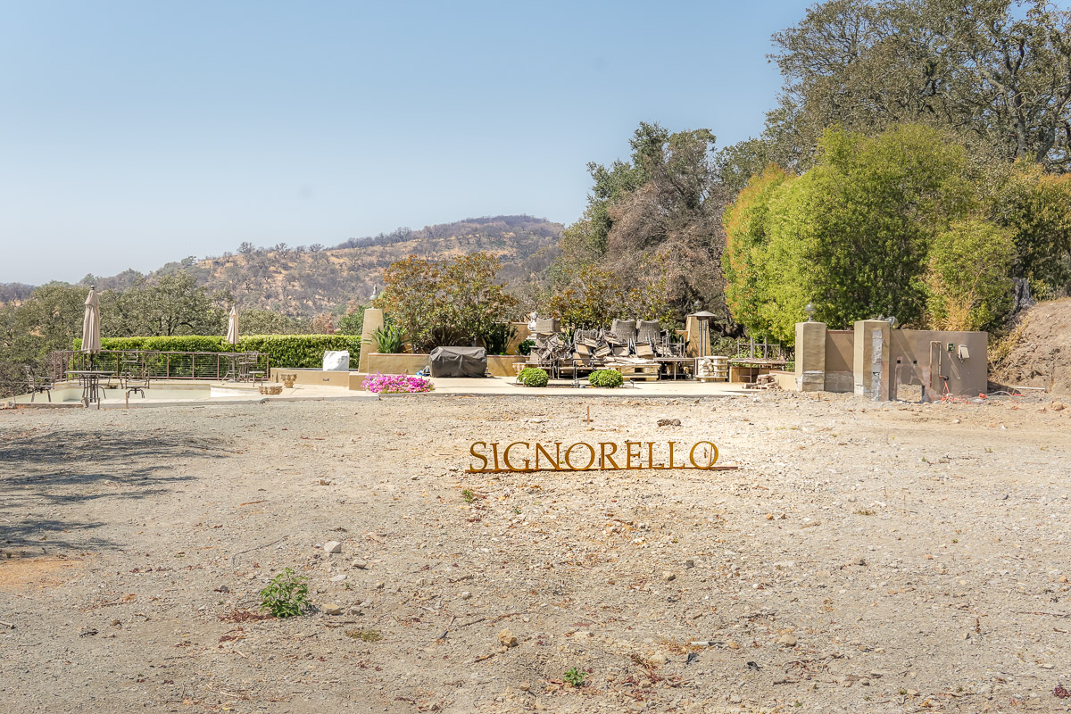 Taking the Road Less Traveled in Napa Valley - Signorello Estate
