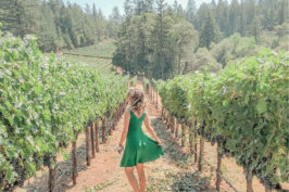 Taking the Road Less Traveled in Napa Valley